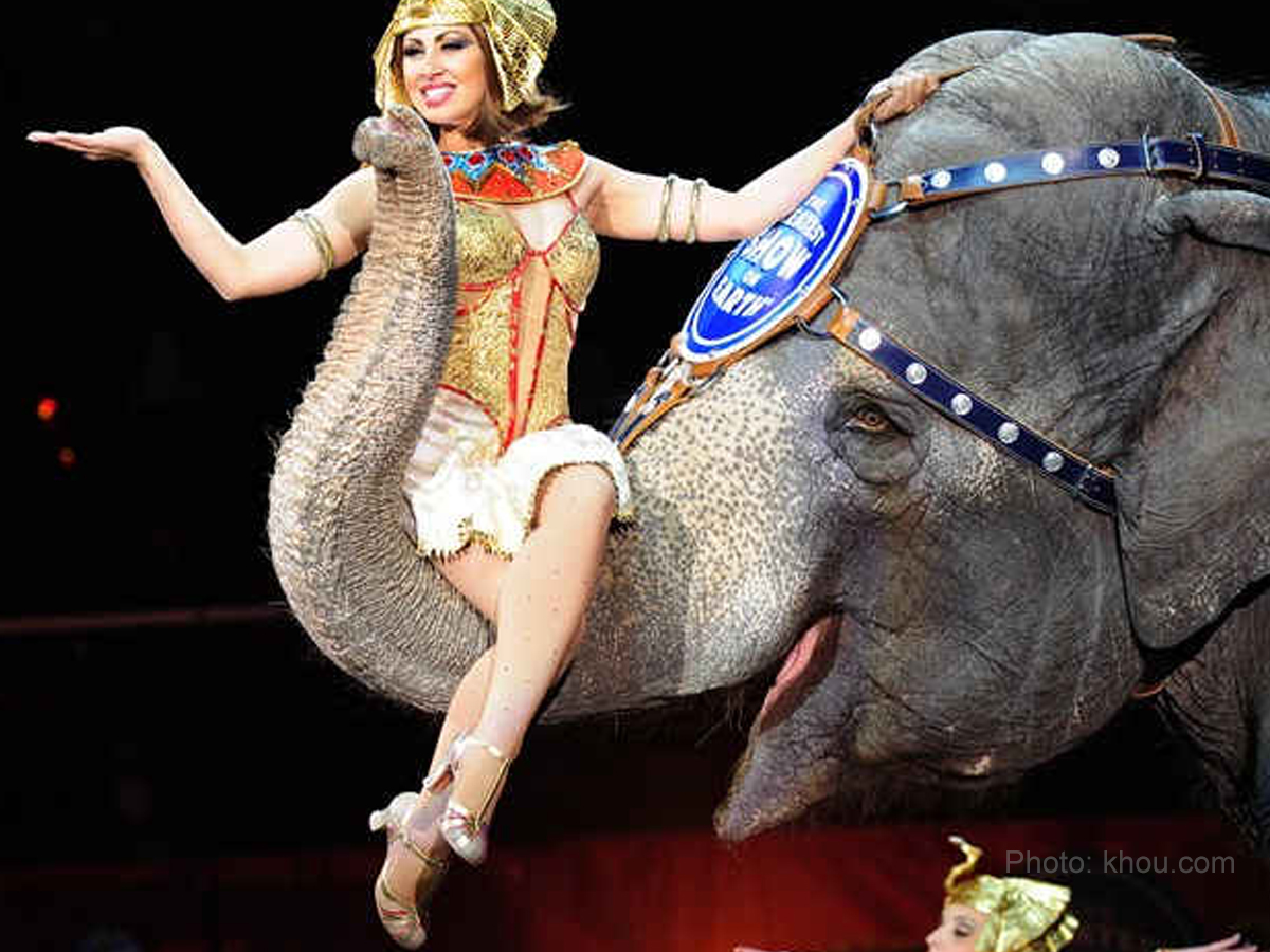 Ringling Bros. Circus to have its final bow in May